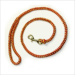 Show leash with handle