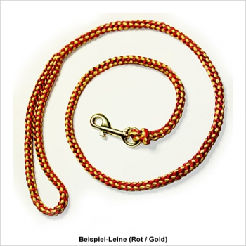 show leash with handle bicolour